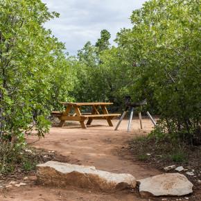zion-ponderosa-campsite